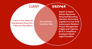 How TACNA Handles Business Administration In Mexico For International  Clients